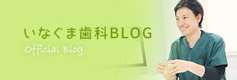 名古屋市南区の歯医者いなぐま歯科のブログ